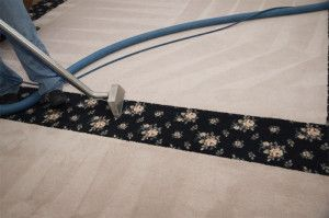 Professional rug cleaning in Palmers Green